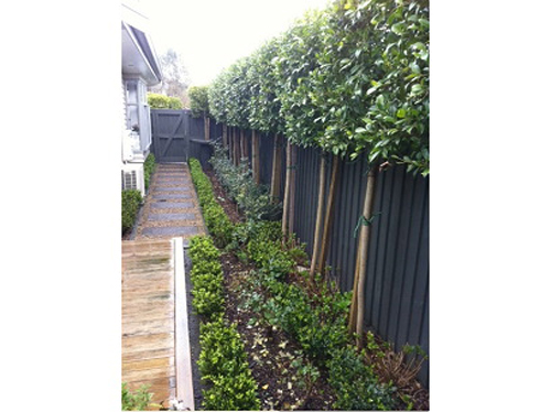 garden landscaping auckland landscaping services north shore
